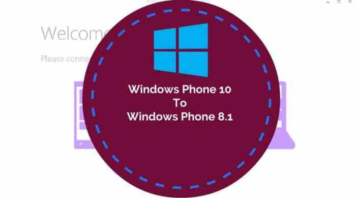 Downgrade Windows Phone 10 to Windows phone 8.1