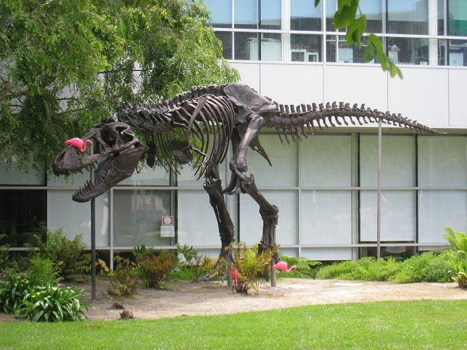 dinosaur game outside google head quarter