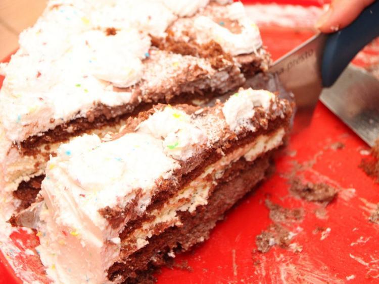 Cutting-Birthday-Cake_Chocolate-Vanilla-Cream__25148