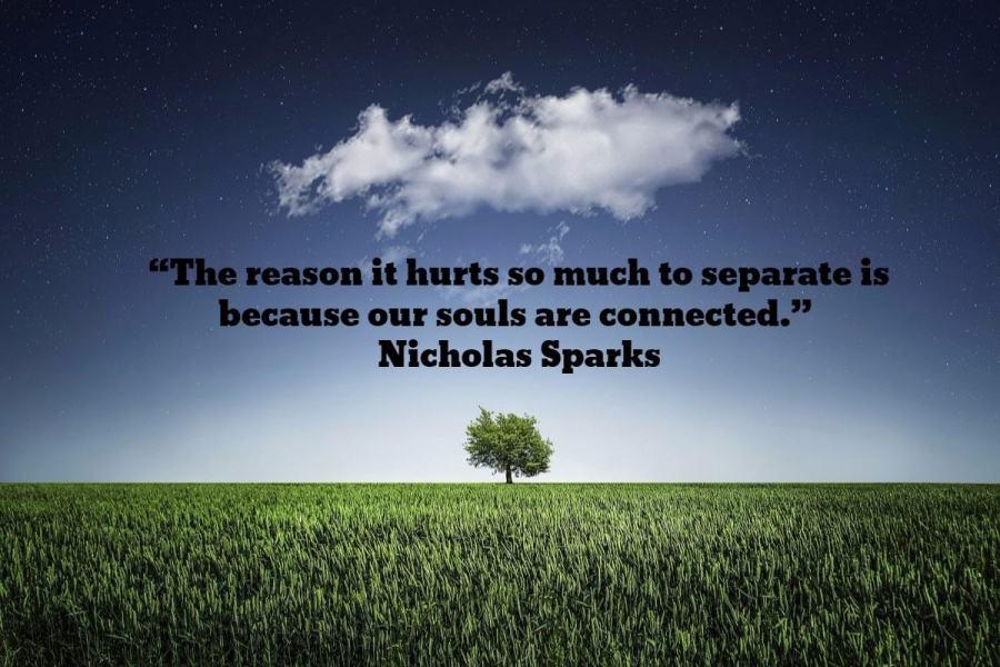 separate soul