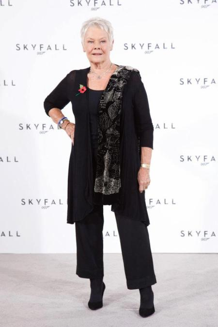 Dame Judi Dench at Skyfall press conference