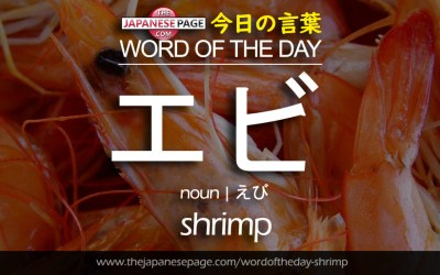 Beginner Word of the Day – エビ [shrimp]