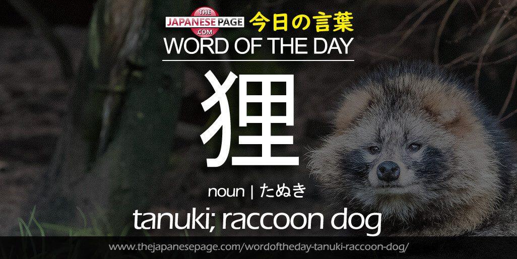 Beginner Word of the Day – 狸 [tanuki; raccoon dog]