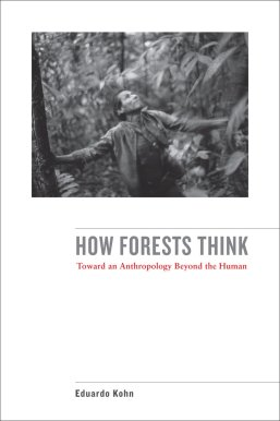 Image result for how forests think