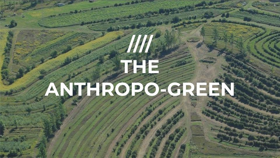 The Anthropogreen Slide