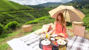 Cameron Highlands Picnic