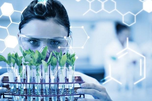 68 studies on the efficiency of marijuana against cancer