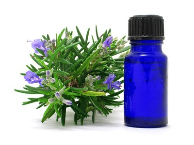 Deodorizing Essences: rosemary herb & oil