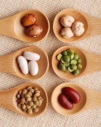 Iron in Foods: a mineral that should never be absent in your diet