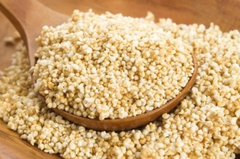 Amaranth popping, gluten-free, high protein grain cereal