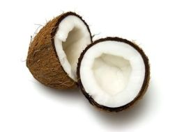 Coconut water: Nutritive and Medicinal properties
