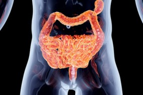 5 Intestine Disorders: Symptoms and recommendations