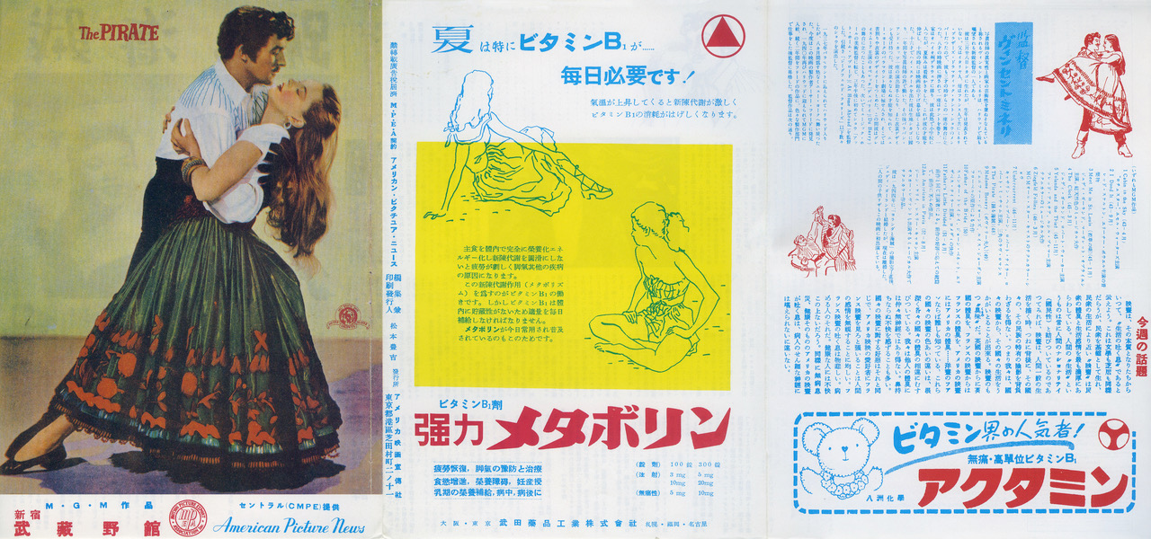 The Pirate Japanese Flyer