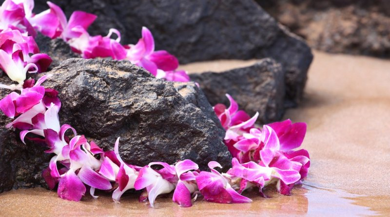 Hawai'i ranks number one for wellness in the U.S.