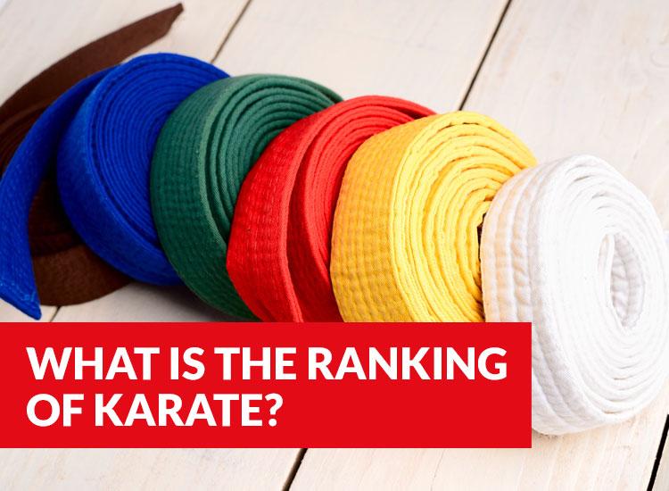 Karate Kenpo Colors Order Belt