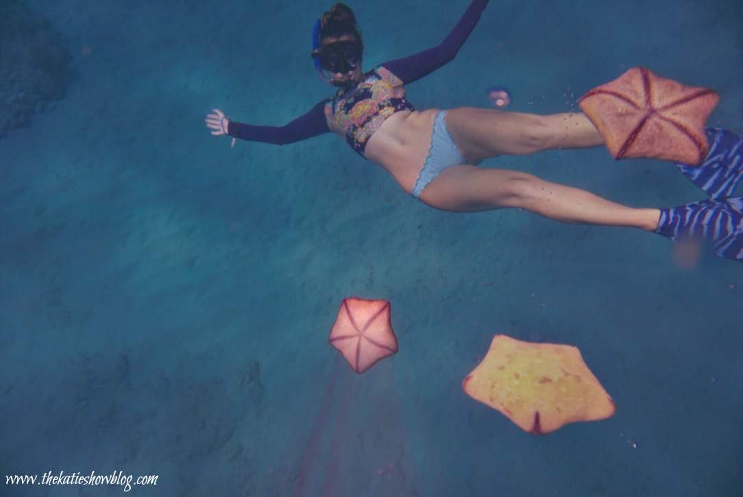 Snorkeling Tips And Tricks For Beginners
