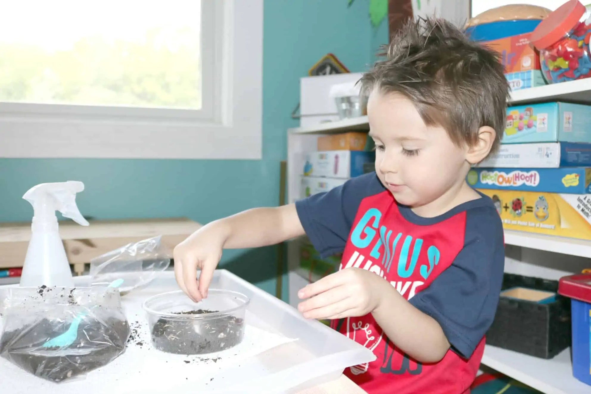 Growing Grass Make Amp Play Gardening Activity For