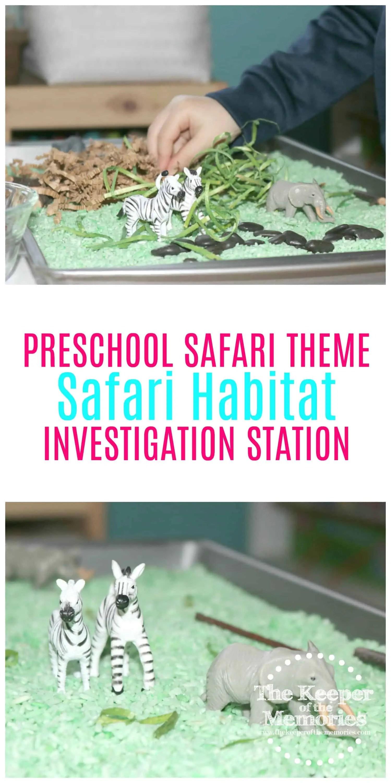 Preschool Safari Theme Safari Habitat 2