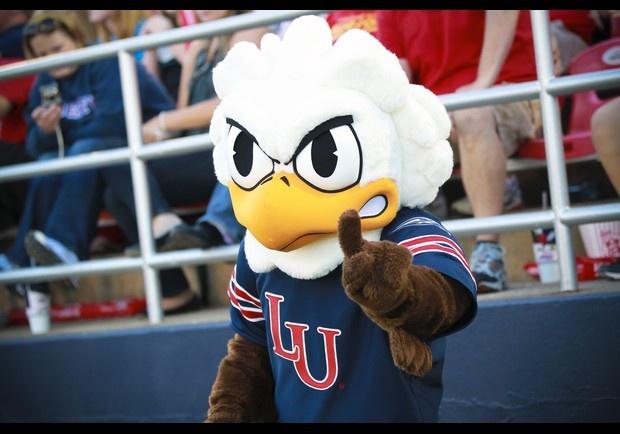 Arrowwood Mascott Sparky Eagle