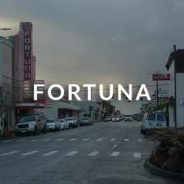 Fortuna, CA homes for sale