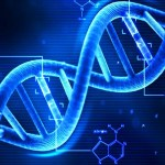 On Spiritual DNA and Inheritance