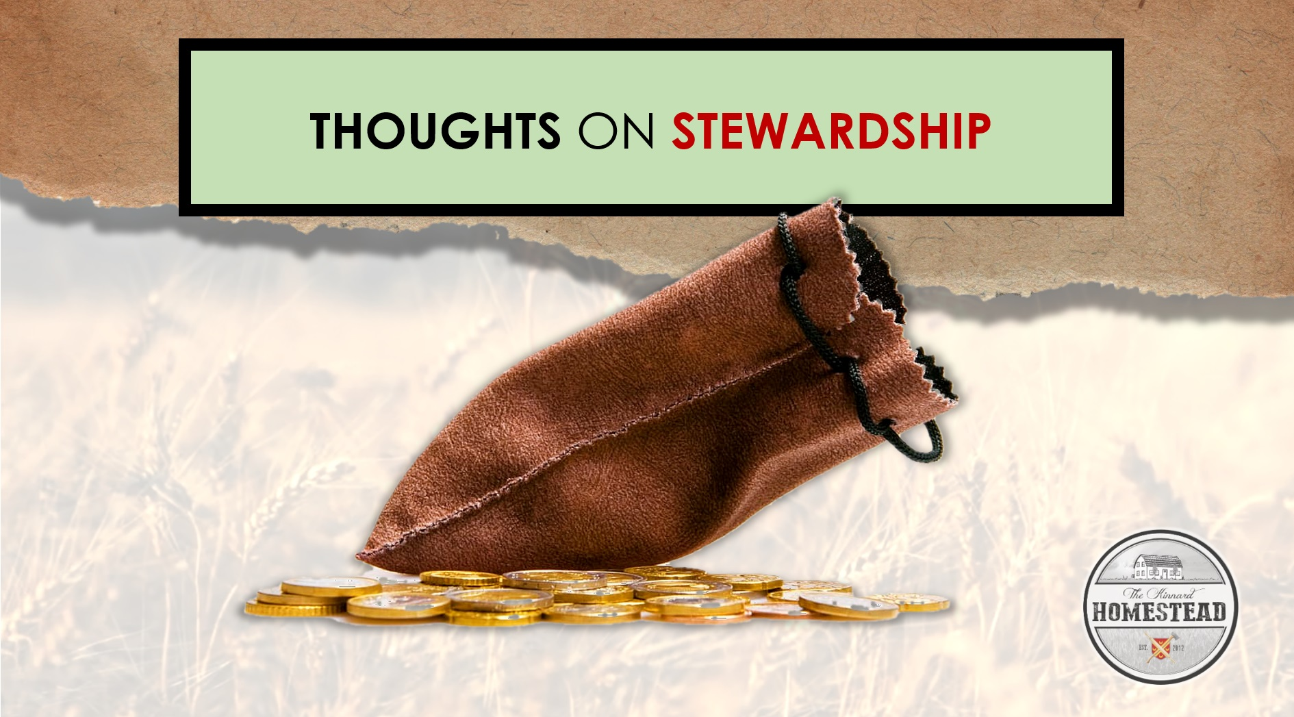 Thoughts on Stewardship
