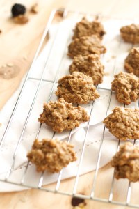 These Maple Walnut Breakfast Cookies are vegan, gluten free, and full of flavor! Naturally sweetened and full of nutrients, they are the perfect quick snack. Or, you can grab a few for a light breakfast.