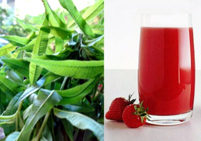 Strawberry and verbena drink