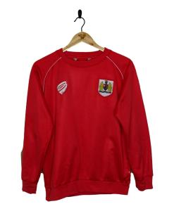 Bristol City Training Top