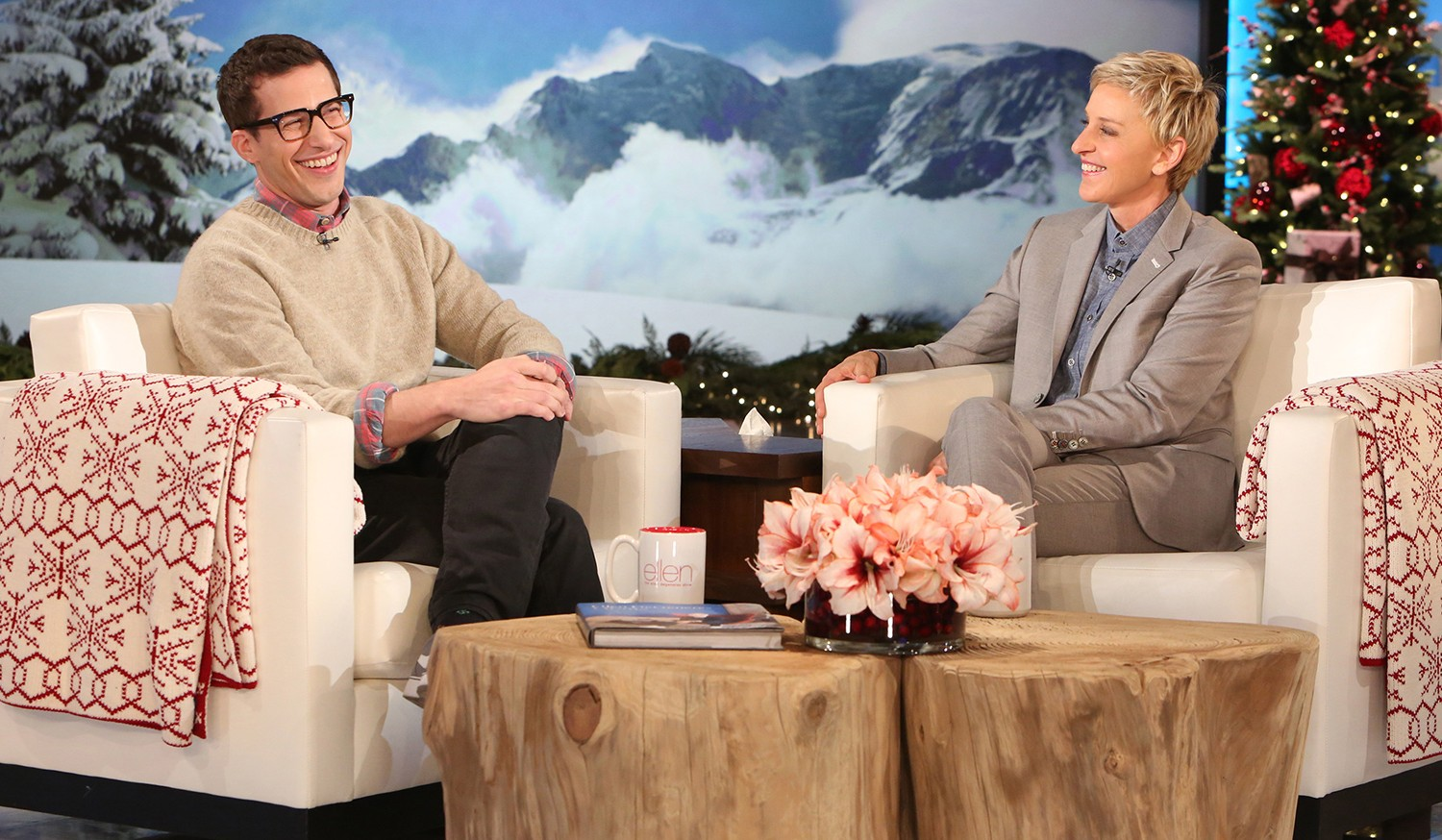 Andy Samberg Shares Funny Wedding Anniversary Gifts With Ellen