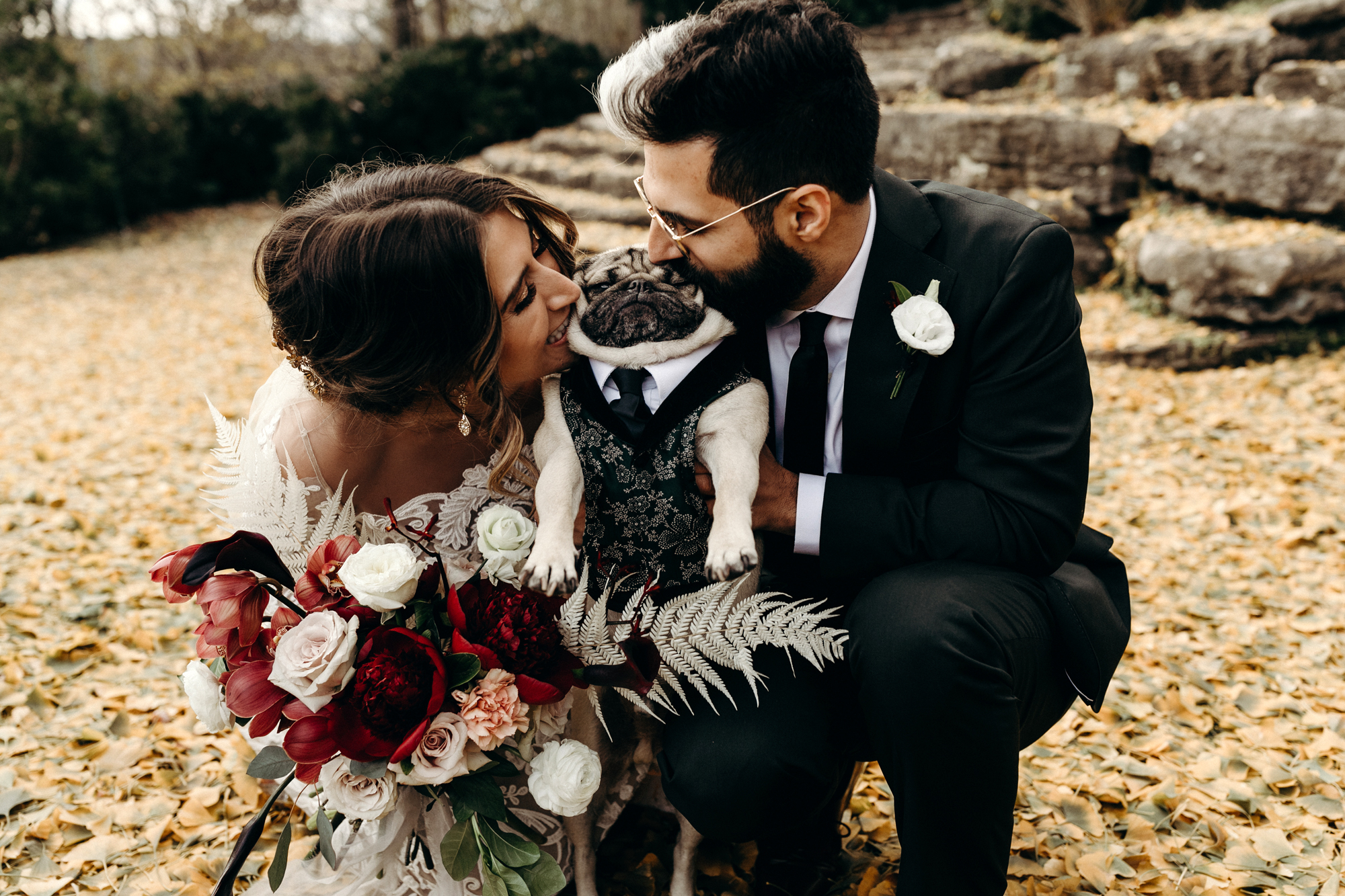 Doug The Pug S Parents Got Married And Queer Eye S