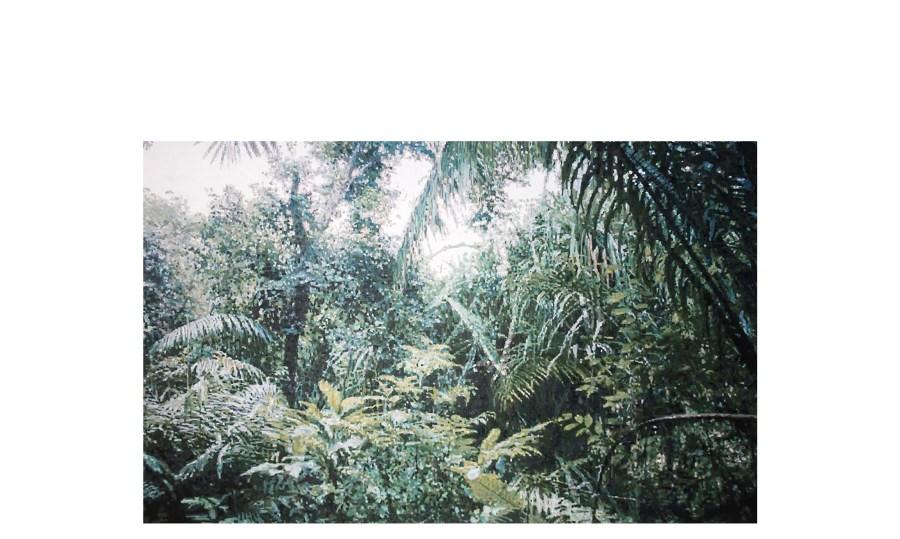 emerald_whipple_kilauea+kauai+2014-2