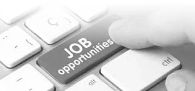 Hot Job Opportunity