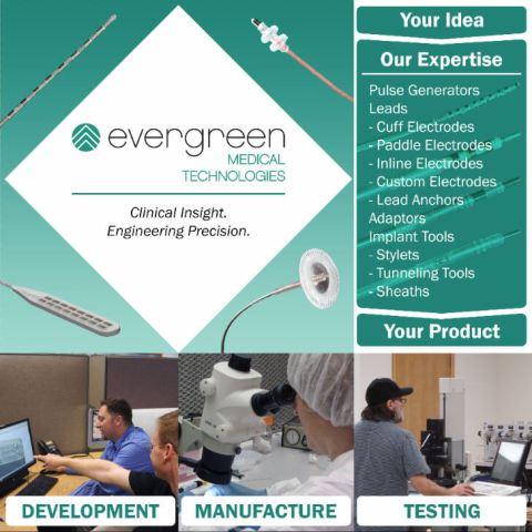 Evergreen Display Mockup