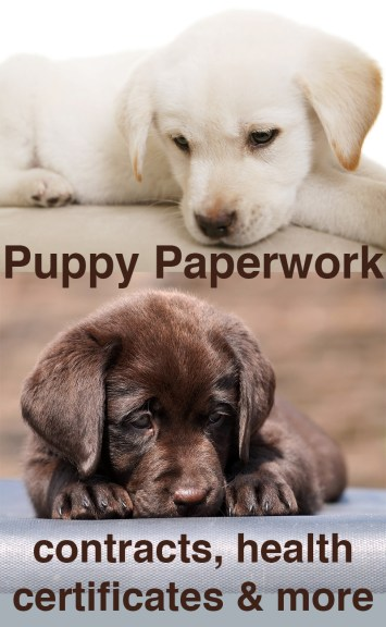Puppy Paperwork: Contracts, Certificates & Microchipping.