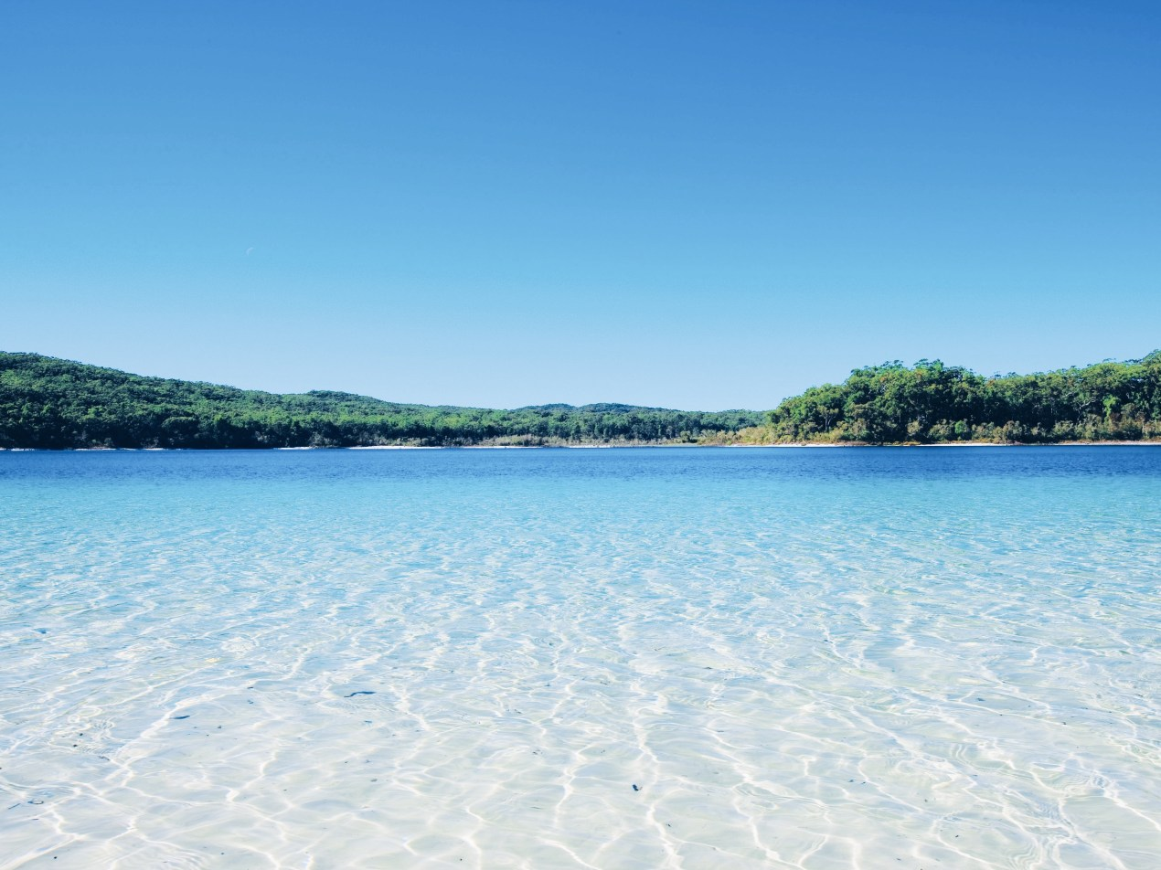 Fraser Island Attractions | The Lady-like Leopard