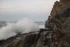 IMG_2492 western Oregon coast, the landrovers
