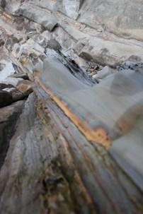 IMG_2503 western Oregon coast, the landrovers