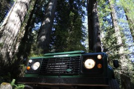 IMG_2599 northern California, The Redwoods, the landrovers, 1984 land rover defender