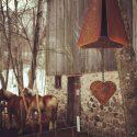 IMG_2020 horse love