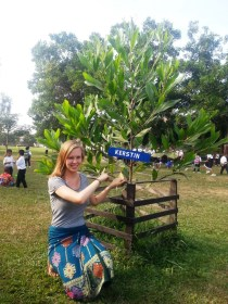 """""""My tree"""" at Ban Sikeud Primary School :) (in exchange for a small donation)"""