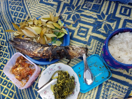A Lao breakfast - fish, rice, and vegetables