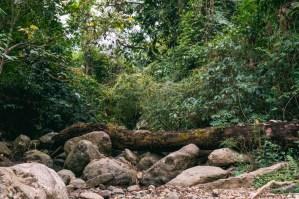 Hiking in Vang Vieng