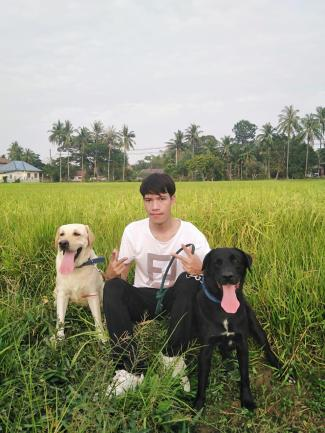 Bounthieng exercises with his dogs in his free time.