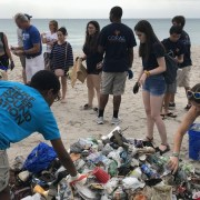 Save the turtles: Hollywood did the right thing in banning single-use plastic