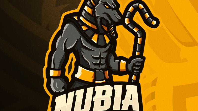 Nubia: tra competitive e server Discord