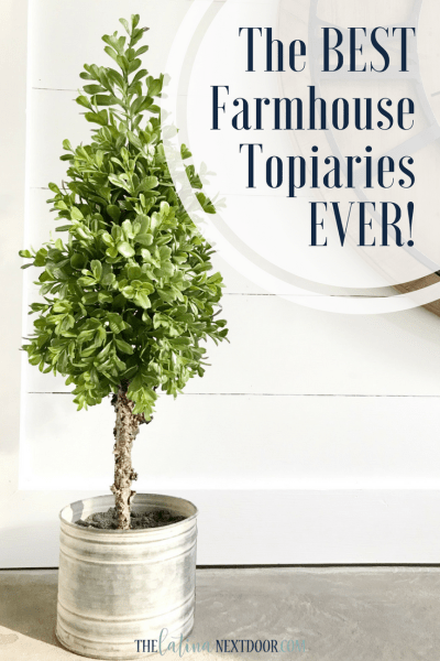 The Best Farmhouse Topiaries