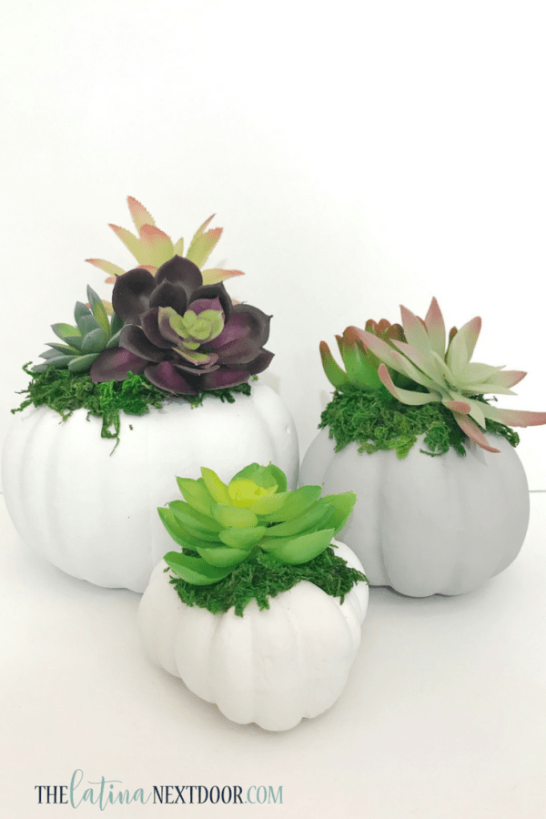 DIY Dollar Tree Fall Succulent Pumpkin Planter 11 7 High End Dollar Tree Fall DIYs