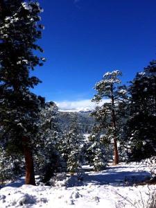 great views at three sisters park