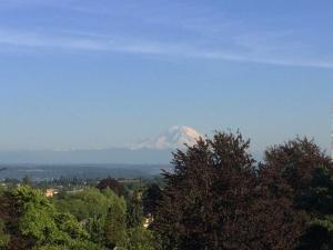 Mt. Rainier from the water tower